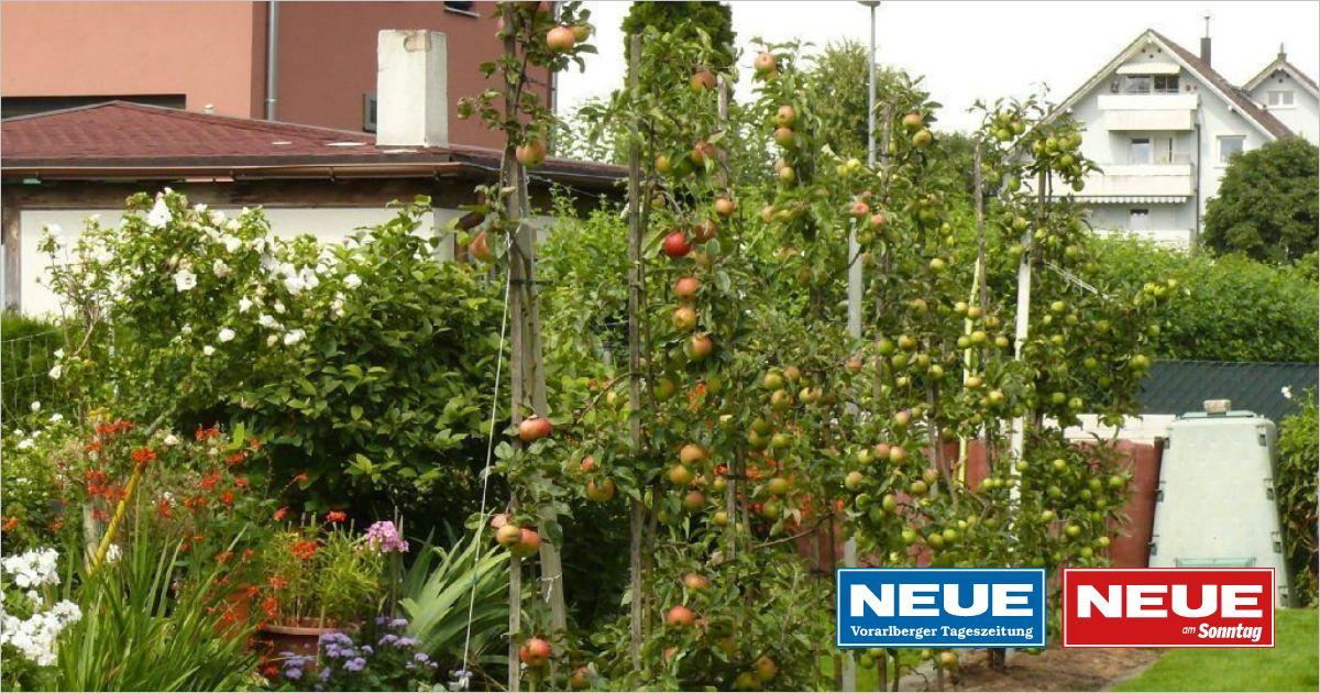 Abwasserbehälter Für Garten